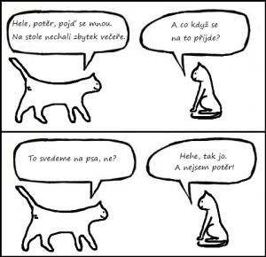 komiks_kocky_2